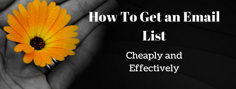Cheap and effective email list building