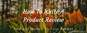 How to write a product review and put money in your pocket