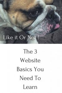 Learn The Website Basics - 3 Things You Need To Learn Now