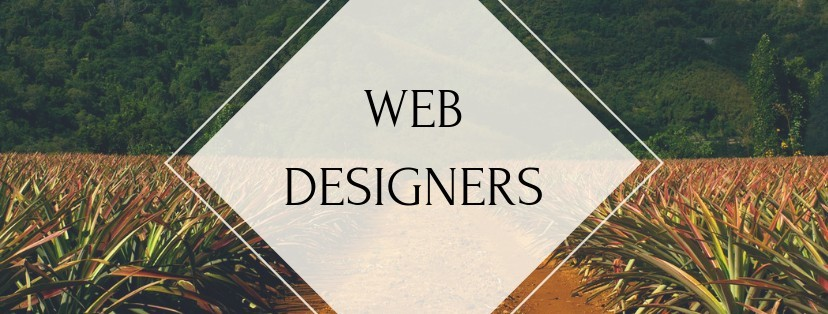 I Need A Web Designer - Tips To Help You Make A Great Decision