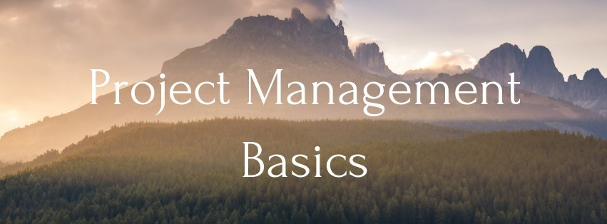 Project Management - Small Business Basics