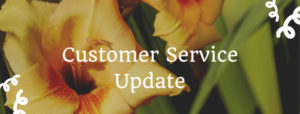 How To Improve In Your Customer Service